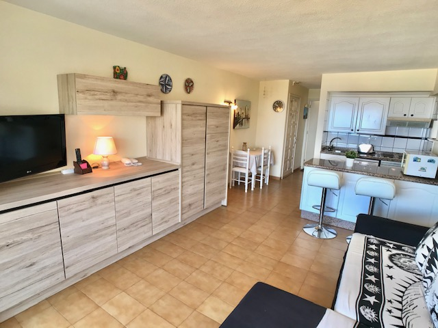 Letting Property Home P0400A, Tenerife, South Tenerife, Puerto Colon